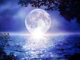 EL HILO DE LOS AMIGUETES XI - Página 6 20090409212736-sea-moon