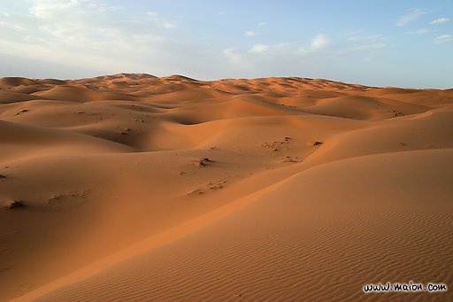 • Dojo de Entrenamiento Suna • 20070929141646-desierto