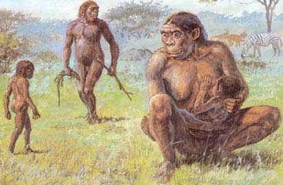 external image 20070627163019-hominidos.jpg
